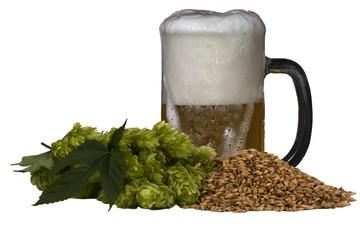 malt hops and beer