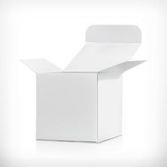 White carton box, vector illustration