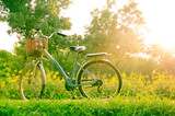 beautiful landscape with Bicycle at park