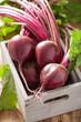 fresh beet in wooden box