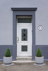 Modernisierter Eingang mit Pflanzenkübel in grau