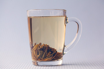 cup of green tea, white background