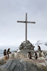 cross at the site where the British wintering and Gentoo penguin