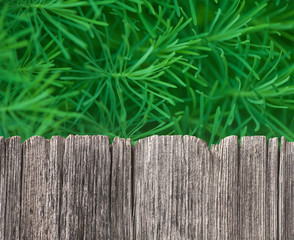 Empty rustic wooden table with grass background