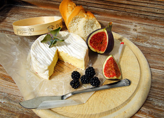 Leckerer Camembert zum Picknick
