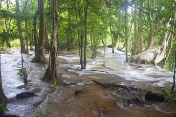 Upper part of Tat Kuang Si waterfall in Laos