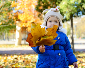 Portrait of cute child playing with leaves in autumn park