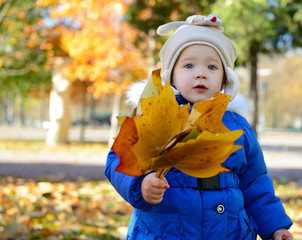 Portrait of child holding bunch of fall leaves. Little girl play