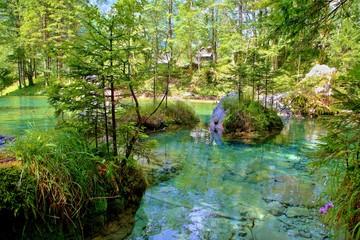 Spring of Kamnik Bistrica, Slovenia (summer 2014)