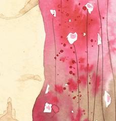 pink, pastel, flowers, white,