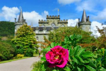 Inveraray castle gardens