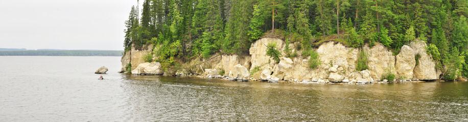 Панорама леса на берегу реки