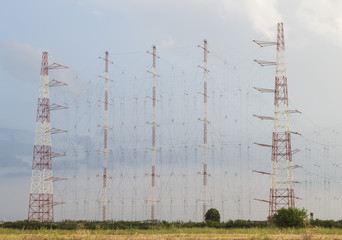 Radio antennas network