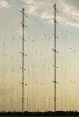 Antenna poles at sunset
