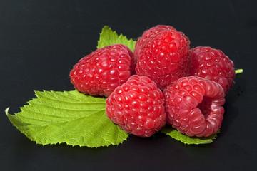 Himbeere; Rubus, idaeus; Waldbeere; Hohlbeere;
