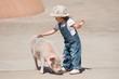 豚を撫でる少女