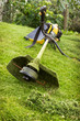Petrol trimmer on the sloped lawn - 69003799