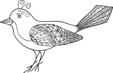 Magic Abstract Bird 2.0