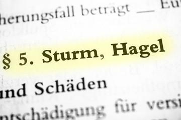 Storm & Hail