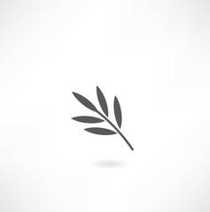 leaf tree icon