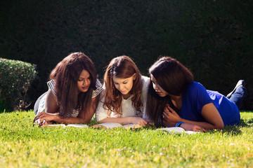 Three Friends Studying