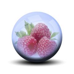 Fruit dans bulle : framboise