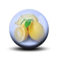 Fruit dans bulle : citronnier