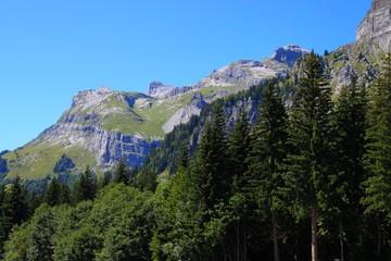 Massif du Faucigny depuis Plaine-Joux