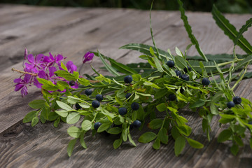 Herbs: Fireweed. Blueberries.