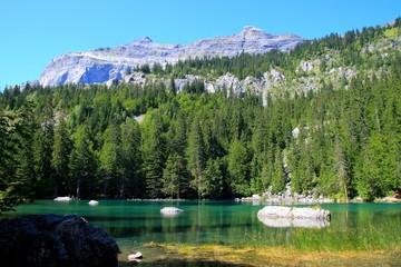 Le Lac Vert, Passy