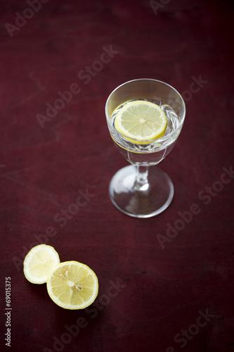 canvas print picture Zitronenscheiben und stilles Wasser