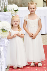 Two bridesmaids