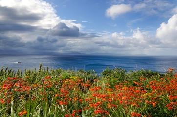 Slea Head Drive View, Ventry, Dingle Peninsula, Ireland
