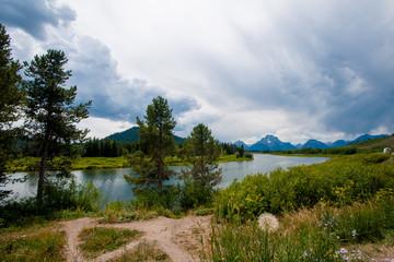 Meadow and River with Tetons in the Background