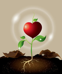 concept of green sprout growing from heart.