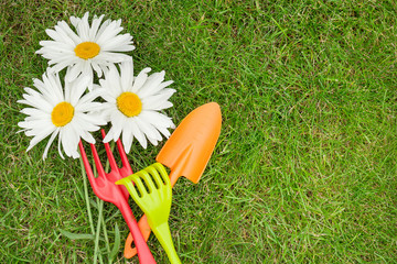 Garden tools and chamomile flowers