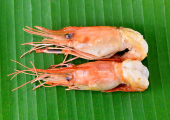 shrimps on banana leaves background