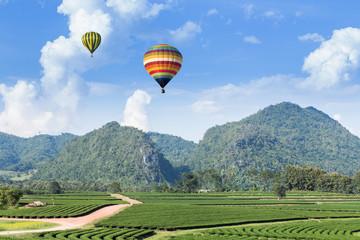 Hot air balloon over the mountain and tea plantation