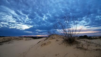 Timelapse in desert. Nature composition.