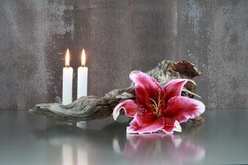 Lilie, Wurzelholz, Kerzen