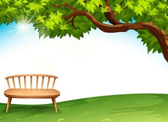 A chair near the tree