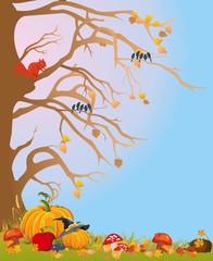 jesienna impresja,