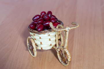 basket with dogwood