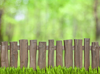 green background with wooden fence