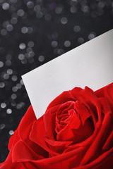 Rose mit Glückwunschkarte
