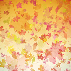 Autumn leaves art background