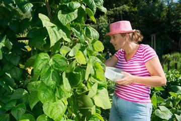 Woman in vegetable garden