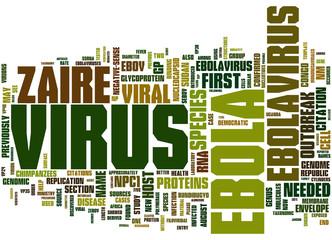 Ebola Virus concepts