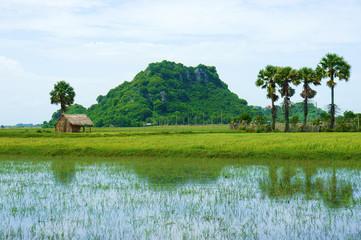 rocky mountain, Mekong Delta, Vietnam