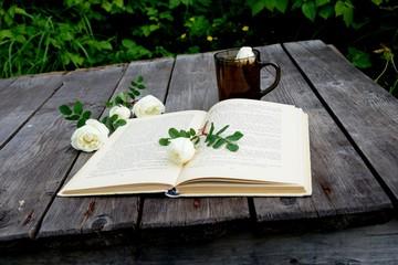 Open book. Reading.